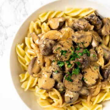 A top down view of a bowl of mushroom stroganoff.